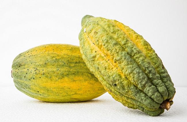 Organic cocoa pods