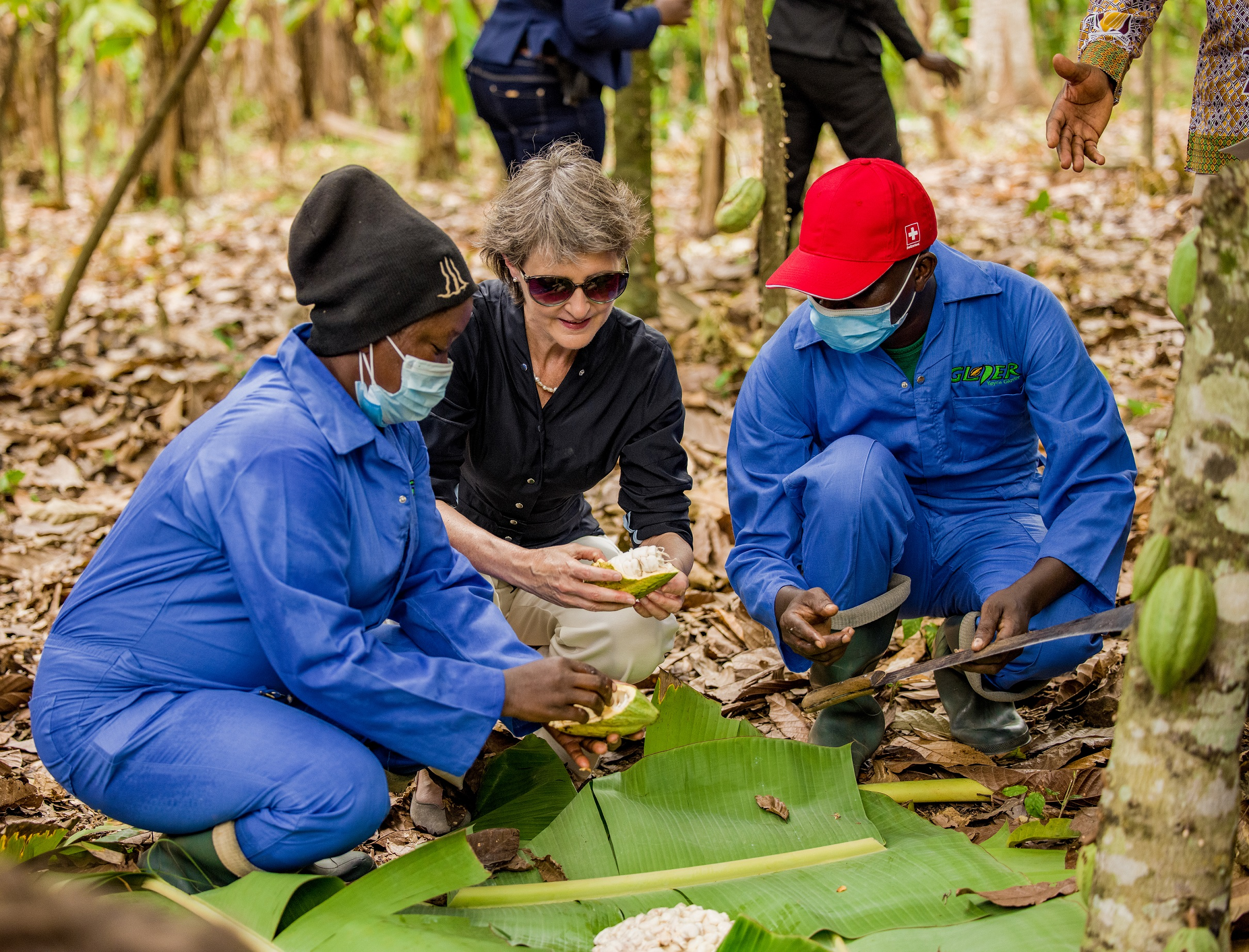 Swiss Federal Councillor visits organic cocoa farm at YGL